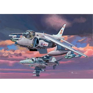 "Model Kit letadlo 4603 - ""JOINT HARRIER FORCE"" HARRIER GR.7 + HARRIER GR.9 (1:144)"