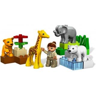 LEGO Duplo - Baby zoo