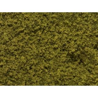 Foliáž olivově zelená, 25 x 15 cm