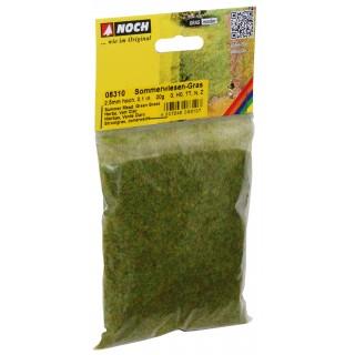 Statická tráva, letní louka, 2,5 mm, 20 g