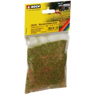 Statická tráva, kvetoucí louka, 2,5 mm, 20 g