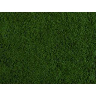 Foliáž tmavě zelená, 20 x 23 cm