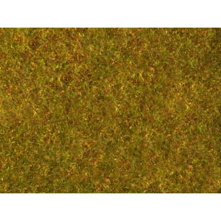 Foliáž louka, žluto zelená, 20 x 23 cm