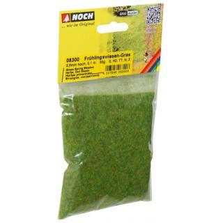 Statická tráva, jarní louka, 2,5 mm, 20 g