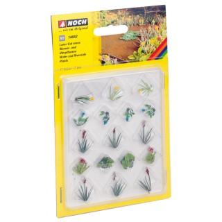 Vodní rostliny 14052