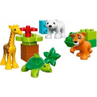 LEGO DUPLO Town - Mláďátka