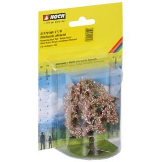 Ovocný strom kvetoucí - 7,5 cm 21570