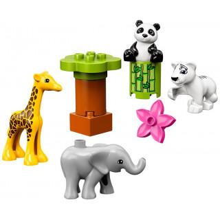 LEGO DUPLO - Zvířecí mláďátka