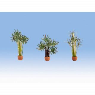 Palmy v květináčích 3ks  NO14024